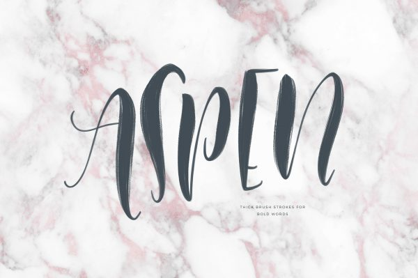 This Procreate Brush Set is called Colorado and is designed by Holly Pixels to help you make beautiful lettering projects on the iPad Pro with Procreate.